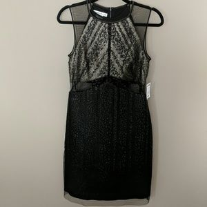 NWT Shimmer Dress